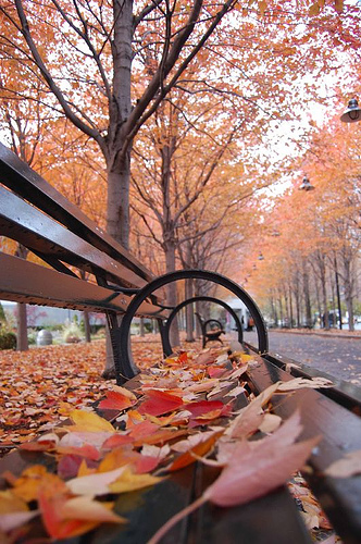 New-York-autunno